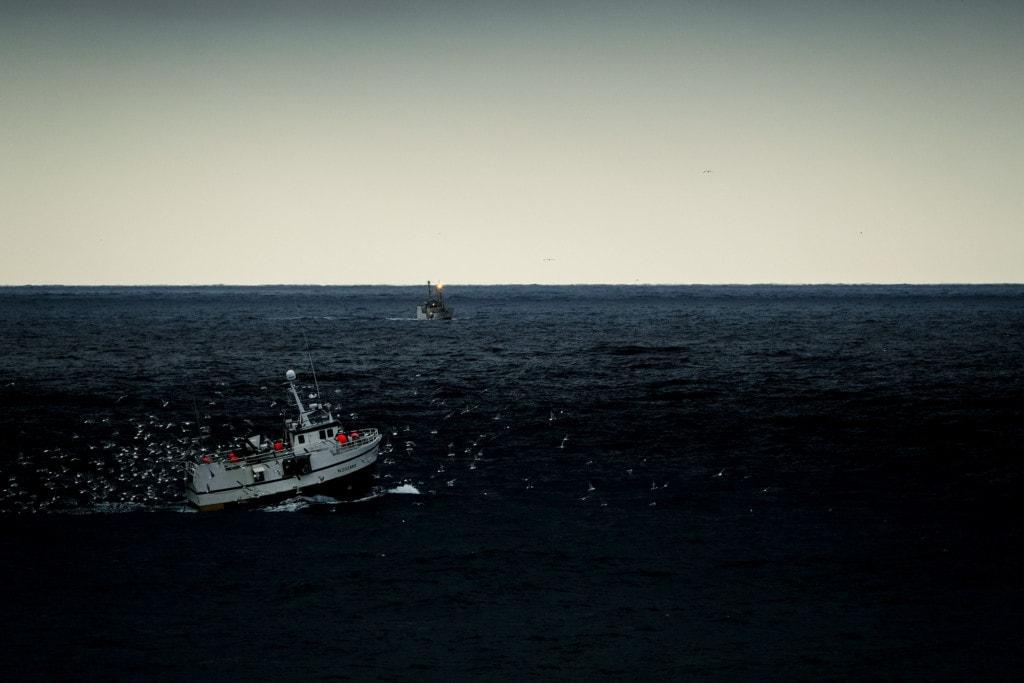 The Lofoten fishery
